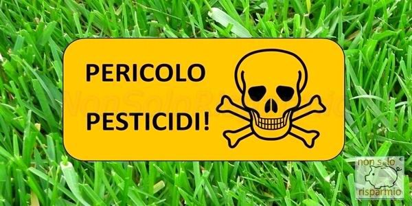 Pesticidi su frutta e verdura
